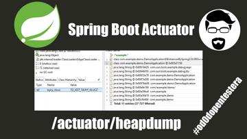 Java Sprint Boot Actuator